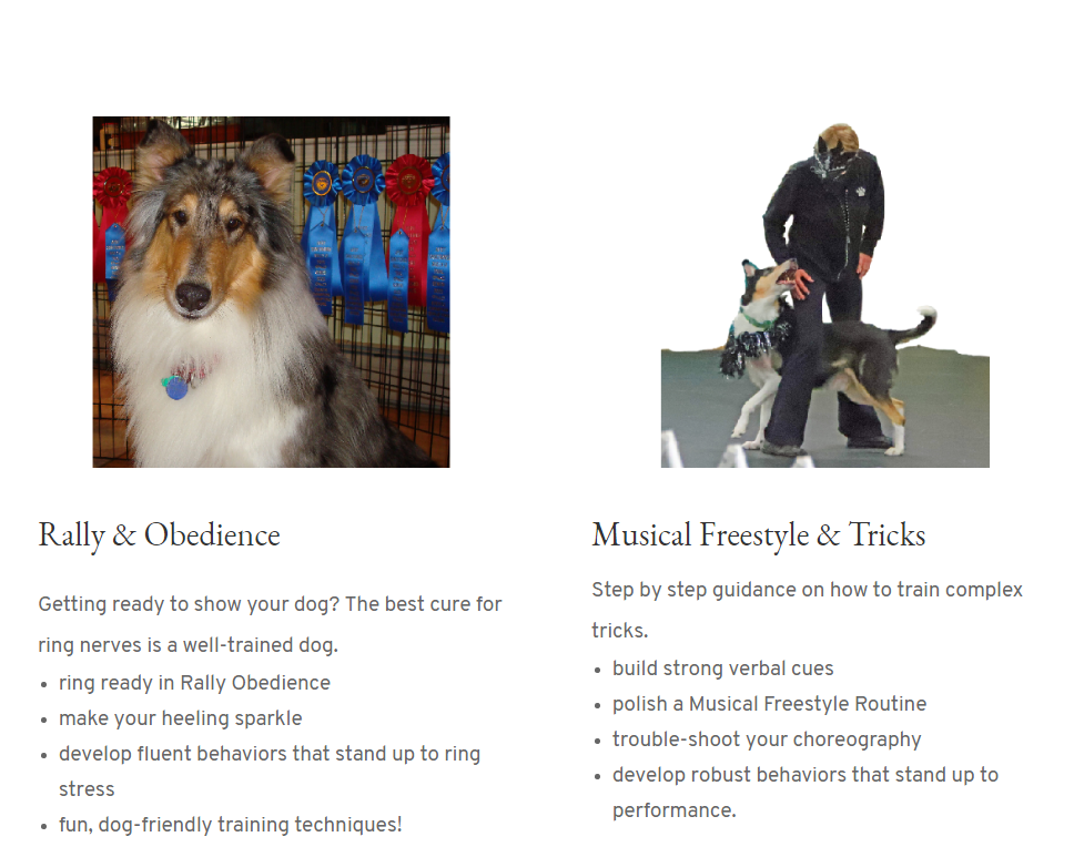 Rally, Obedience, Musical Freestyle, & Tricks. Dog training lessons for specific skills.